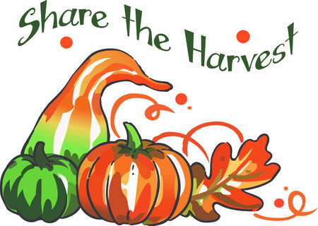 fall harvest: Decorate for the fall holidays with colorful harvest foods.