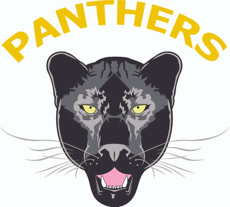 mountain lion: Show your team spirit with this panther logo.  Everyone will love it! Illustration