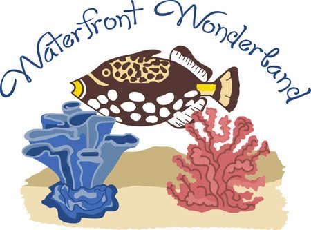 美しい水と海洋生物。 このデザインで偉大な概念から純粋な至福!