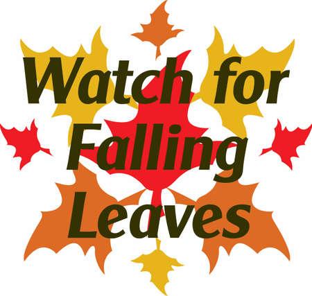 the season: Display colorful leaves for the fall season.