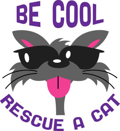 have fun: Cat lovers will have fun with a cool cat.