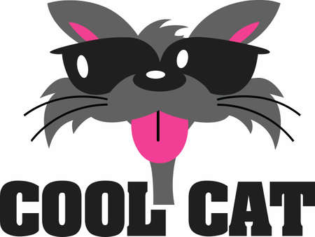 Cat lovers will have fun with a cool cat.