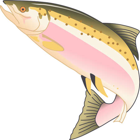 coho: Vacationing at the bay is lots of fun.  Take this fish to remember it always.
