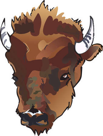 Have a great symbol of the American Indian with this unique buffalo head design. Illustration