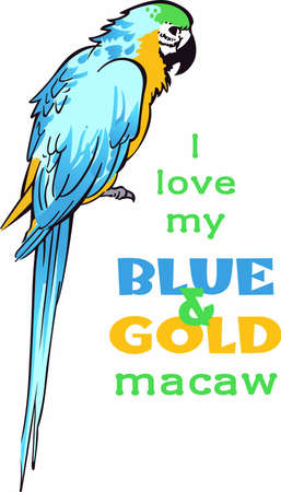 macaw: The beautiful macaw lives deep in the jungle.  Get a glimpse of this beautiful bird at a zoo.  This cute design by Great Notions makes a wonderful gift!