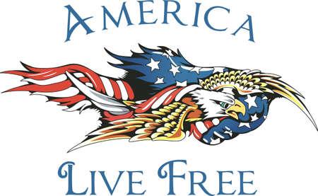 ゴッドブレス アメリカ自由を祝う! この 7 月 4 日を祝うために家族や友人のためのアイテムに最適です。 彼らはそれを愛する! 写真素材 - 45244074