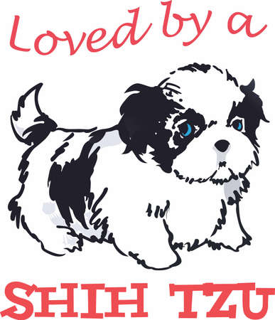 Have a shih tzu with you always with this cute dog.