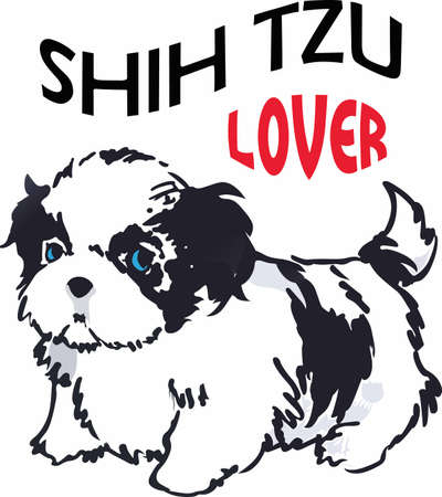 shih tzu: Have a shih tzu with you always with this cute dog.