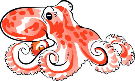 This mysterious octopus with its tentacles waiting on the ocean floor, is a perfect design for any seaside beach theme.