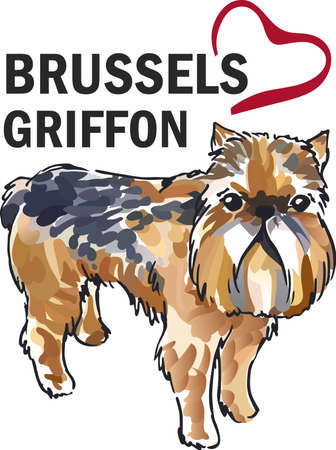 griffon: Have a little brussels griffon with this cute dog.