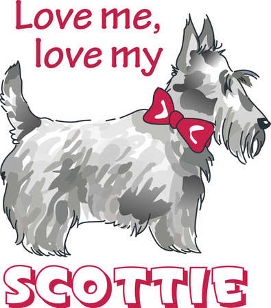 pure bred: Have a scottish terrier with you always with this little dog.