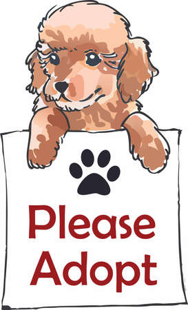 pure bred: Have a poodle with you always with this cute dog. Illustration