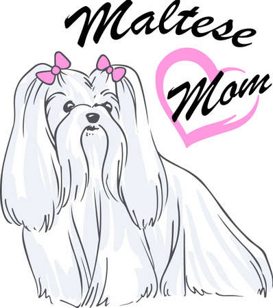 pure bred: Have a maltese with you always with this cute dog. Illustration