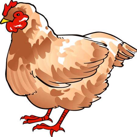 Hühner sind eine große Auszeichnung für jede Küche Dekor. Standard-Bild - 45244974
