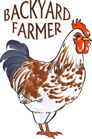 Hühner sind eine große Auszeichnung für jede Küche Dekor. Standard-Bild - 45245071