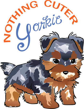 Have a yorkie with you whereever you go with this litte dog.