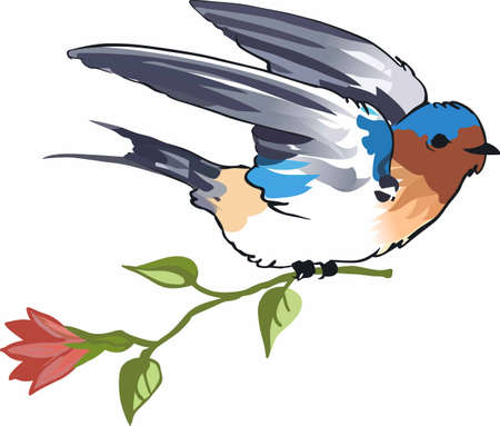 barn swallow: Adorn any project with a beautiful bird and flower