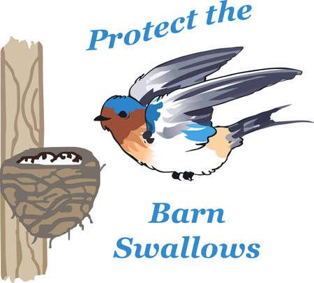 美しい鳥と鳥の巣デザイン プロジェクトを飾る。  イラスト・ベクター素材