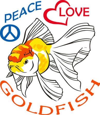 Beautiful goldfish are nice in ponds or aquariums. Illustration