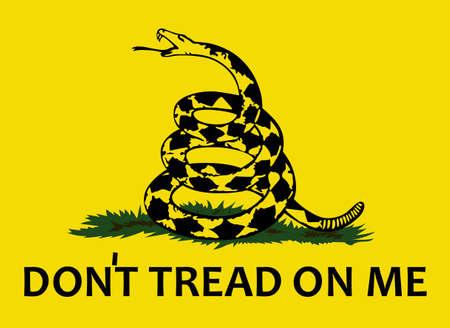Have a patriotic revolutionary war flag.