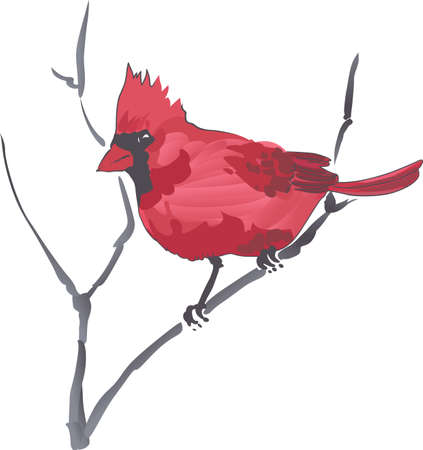 This beautiful Cardinal is the state bird for Virginia. Pick those designs by Great Notions! 矢量图像