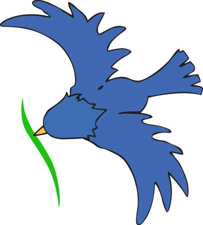 bluebird: Bird watchers will enjoy this bluebird making a nest.