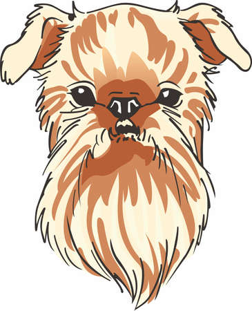 griffon bruxellois: Have a brussels griffon with you always with this cute dog. Illustration