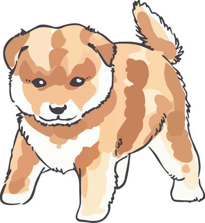 pure bred: An adorable dog will be nice for any animal lover.