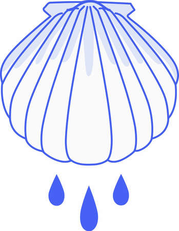 baptize: Have this baptism shell for a very special occasion.