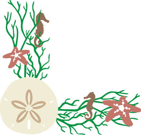 sand dollar: A beach towel or bag will look wonderful with a sand dollar decoration.