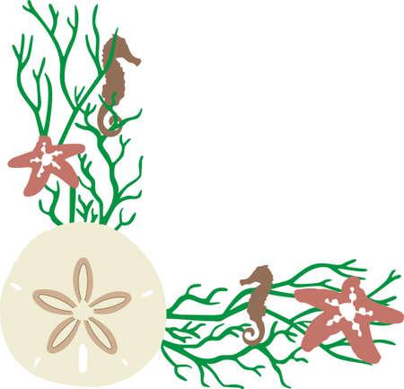ocean floor: A beach towel or bag will look wonderful with a sand dollar decoration.