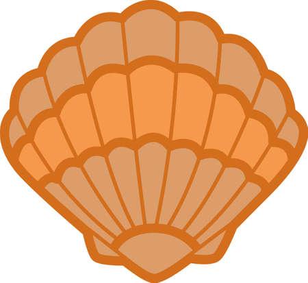 Ein Strandtuch oder eine Tasche mit einer Muschel Dekoration wunderbar aussehen. Standard-Bild - 45293167