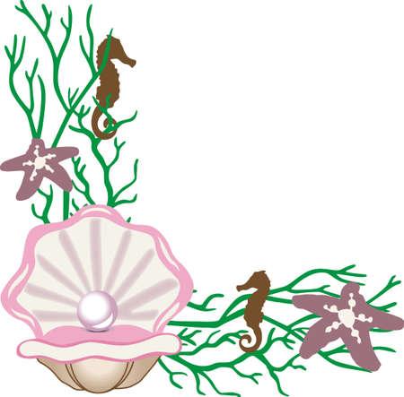 Ein Strandtuch oder Tasche aussehen wird wunderbar mit einem Austernperlendekoration. Standard-Bild - 45293218