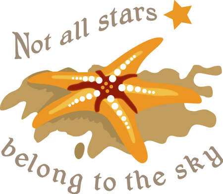 A beach towel or bag will look wonderful with a starfish  decoration.