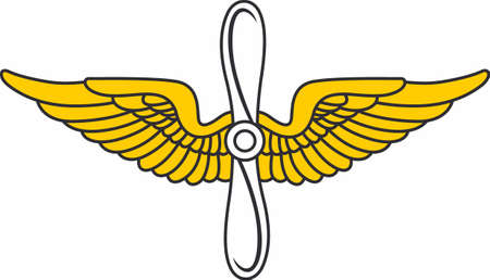 Put pilot's wings on a hat or shirt.