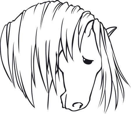 A beautiful stallion is an elegant animal.