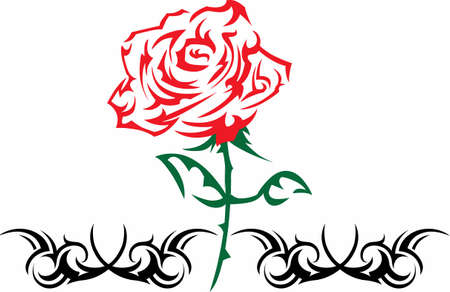 long stem: This beautiful red rose makes a perfect gift!   Illustration