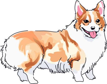 cardigan: Dog lovers will appreciate this precious puppy.