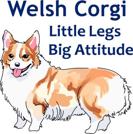 corgi: Dog lovers will appreciate this precious puppy.