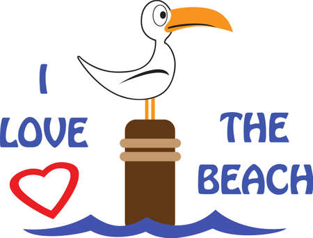 seabird: A seabird is a summer time beach friend for any project. Illustration
