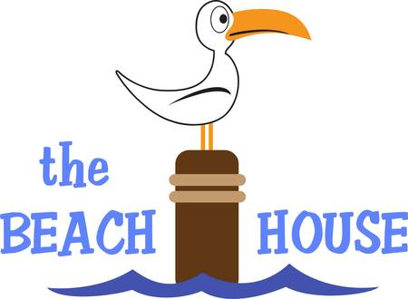 water fowl: A seabird is a summer time beach friend for any project. Illustration