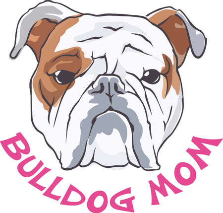 pure bred: A cute bulldog will be a nice friend for any dog lover. Illustration