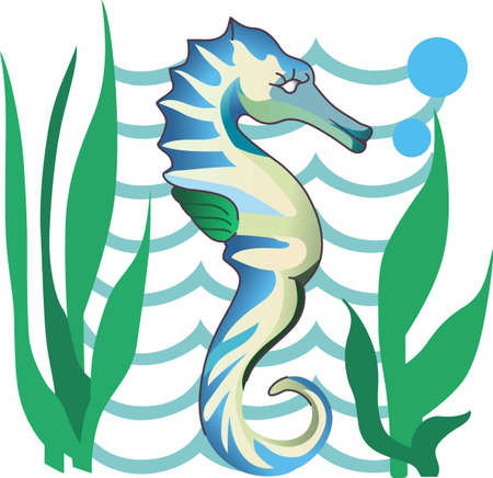 kelp: A sweet seahorse is perfect for the sea life lover.
