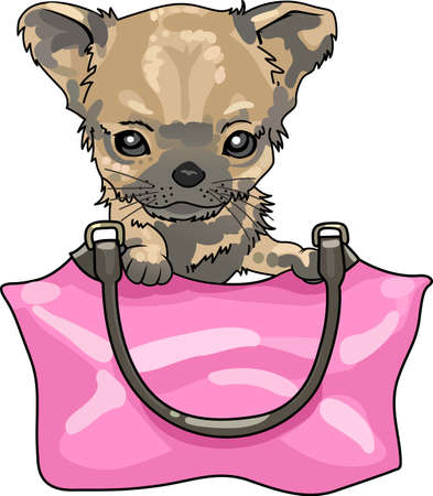 whelps: Take your chihuahua everywhere you go in your purse.  A cute design from Great Notions.