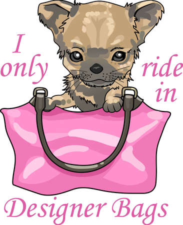 Take your chihuahua everywhere you go in your purse.  A cute design from Great Notions.