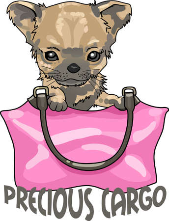 whelp: Take your chihuahua everywhere you go in your purse.  A cute design from Great Notions.