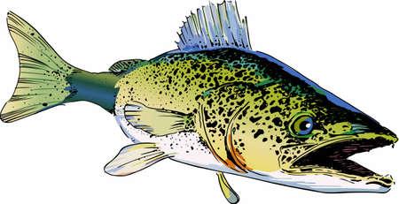 この大きな walley 魚のあなたの服やアクセサリーのデザインを選択します。