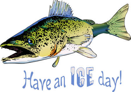 walleye: Pick this large walley fish designs for your clothing and accessories. Illustration