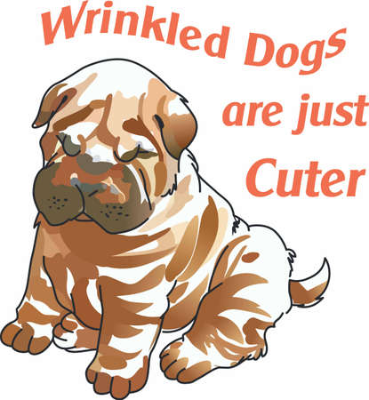 Have a cute shar pei with you whereever you go with this litte dog.