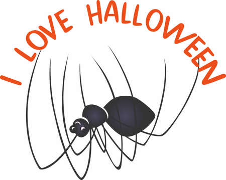 decoraton: Have a fun spider for a halloween decoraton.